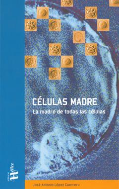 Células madre, la madre de todas las células